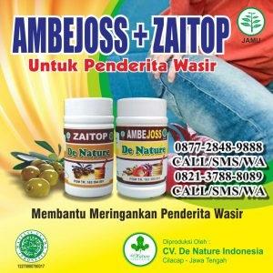 Obat Herbal Untuk Penyakit Buang Air BesarBerdarah